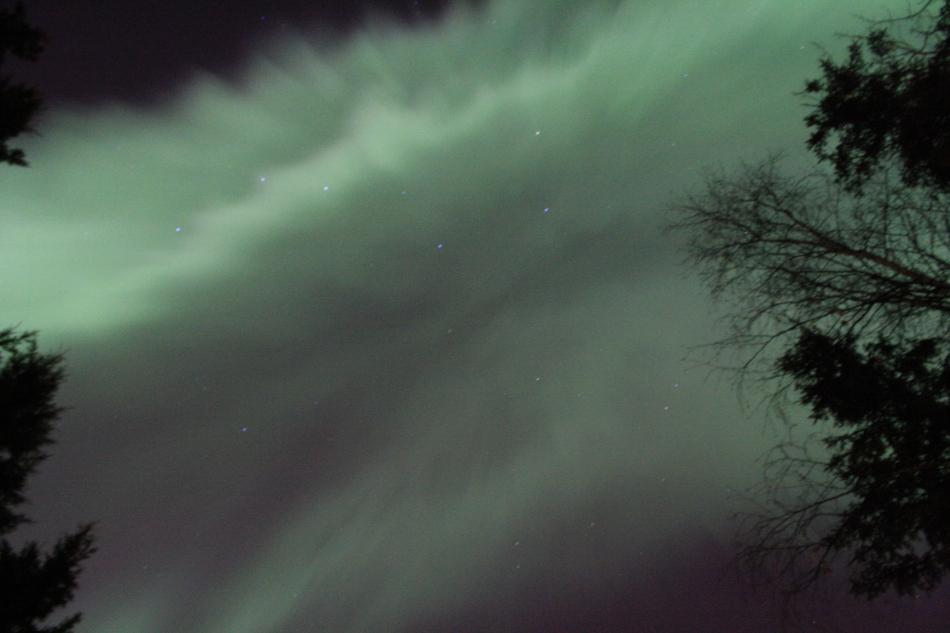Aurora20