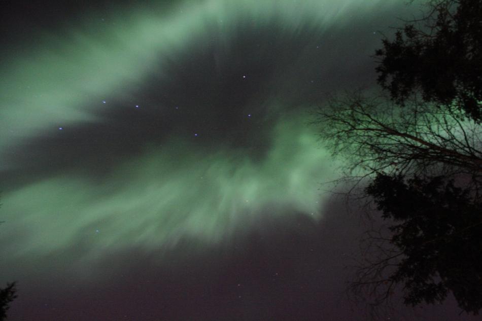 Aurora21