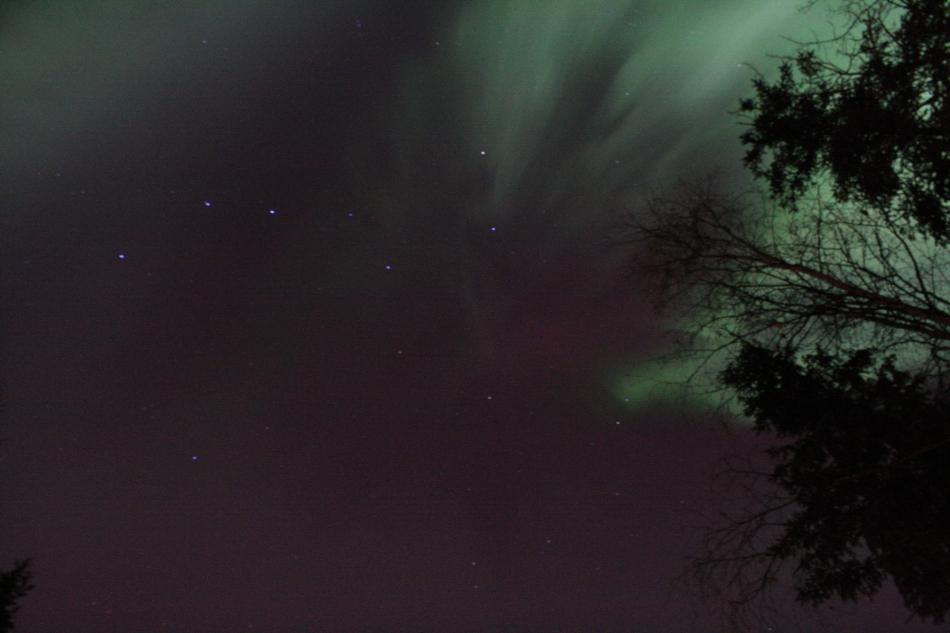 Aurora24