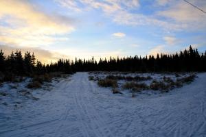 trails 3