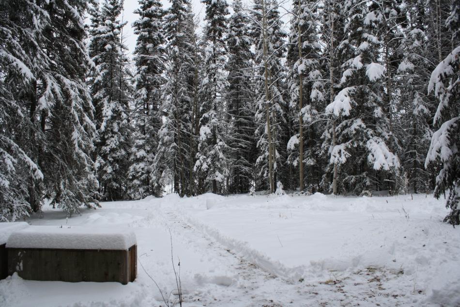 Sunday chore, shoveling snow..